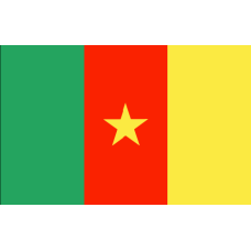 Flag of Cameroon - 200x120cm