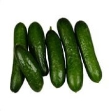 Small Cucumber 1kg